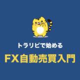 【トラリピで始めるFX自動売買入門】初心者向けのやり方・始め方